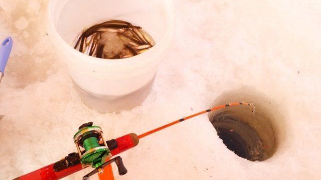 ワカサギリールで穴釣りを楽しんでいる様子