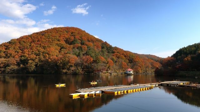 円良田湖のワカサギ釣り